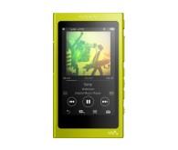 MP3 плеер Sony Hi-Res NW-A35 16 ГБ